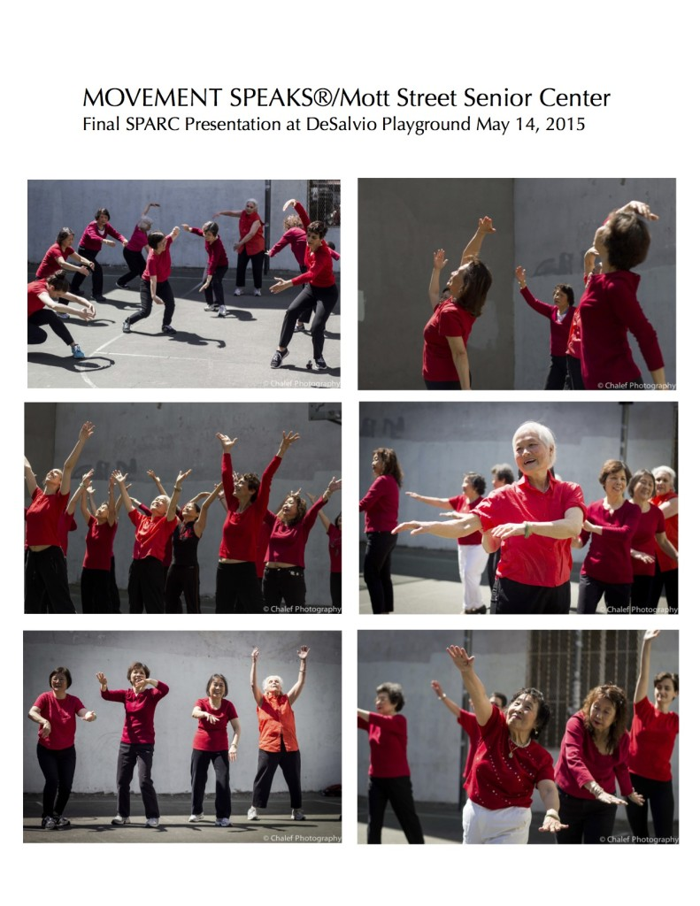 SPARC Grant Photo Page